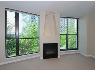 Photo 3: 303 501 Pacific Street in Vancouver: Yaletown Condo for sale (Vancouver West)  : MLS®# V1065282