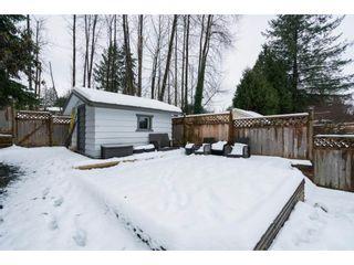 """Photo 18: 22698 KENDRICK Loop in Maple Ridge: East Central House for sale in """"Kendrick Loop"""" : MLS®# R2429797"""