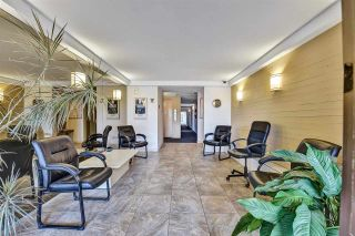 """Photo 4: 104 11957 223 Street in Maple Ridge: West Central Condo for sale in """"Alouette Apartments"""" : MLS®# R2586639"""