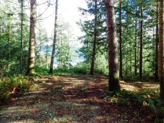 Photo 4: 6151 HARBOUR Way in Sechelt: Sechelt District Land for sale (Sunshine Coast)  : MLS®# R2530969