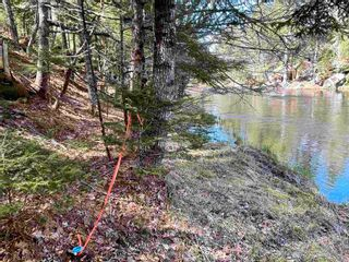 Photo 8: Lot VH-1 Highway 10 in Meisners Section: 405-Lunenburg County Vacant Land for sale (South Shore)  : MLS®# 202111350