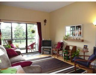 Photo 4: 305 3451 SPRINGFIELD Drive in Richmond: Steveston North Condo for sale : MLS®# V741634