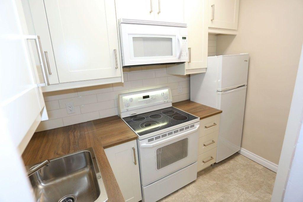 Photo 11: Photos: 233 Lipton Street in Winnipeg: Wolseley Duplex for sale (5B)  : MLS®# 1715525