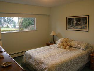Photo 27: 20319 DEWDNEY TRUNK ROAD in MAPLE RIDGE: Home for sale : MLS®# V1044822