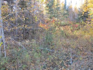 Photo 10: Lot 157-159 Third Avenue South in Kenora: Vacant Land for sale : MLS®# TB202564