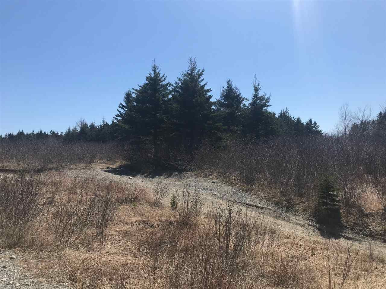 Photo 10: Photos: 11574 Highway 7 in Lake Charlotte: 35-Halifax County East Vacant Land for sale (Halifax-Dartmouth)  : MLS®# 201927372