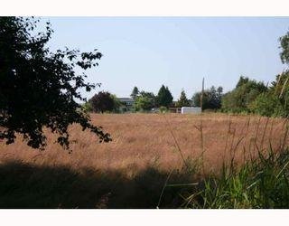 Photo 4: 4811 36TH Avenue in Ladner: Ladner Rural House for sale : MLS®# V724583