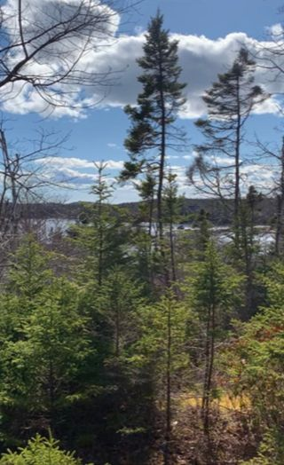 Photo 2: Lot 5R 19 East Dover Road in East Dover: 40-Timberlea, Prospect, St. Margaret`S Bay Vacant Land for sale (Halifax-Dartmouth)  : MLS®# 202109288