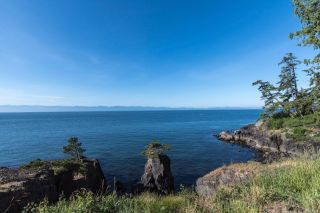 Photo 42: 2470 Lighthouse Point Rd in : Sk French Beach House for sale (Sooke)  : MLS®# 867503