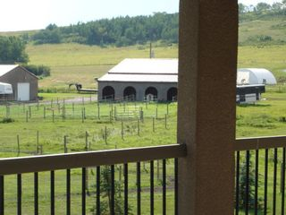 Photo 8: 322188 135 Street W: Rural Foothills County Detached for sale : MLS®# A1068193