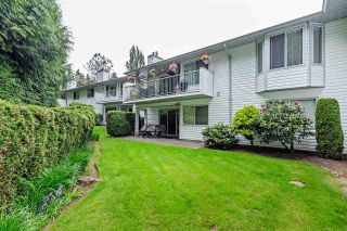 """Photo 40: 13 2988 HORN Street in Abbotsford: Central Abbotsford Townhouse for sale in """"Creekside Park"""" : MLS®# R2583672"""