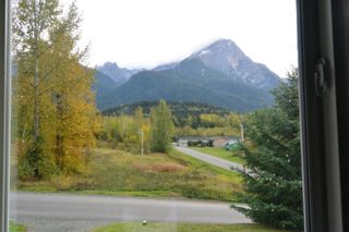 Photo 9: 4803 7TH Avenue in New Hazelton: Hazelton House for sale (Smithers And Area (Zone 54))  : MLS®# R2422686