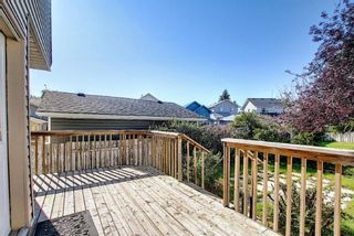 Photo 35: 8 Martinridge Way NE in Calgary: Martindale Detached for sale : MLS®# A1141248