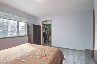 Photo 47: 128 Eldorado Close NE in Calgary: Monterey Park Detached for sale : MLS®# A1116586