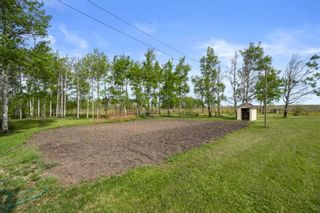 Photo 9: 31101 RR25: Rural Mountain View County Detached for sale : MLS®# A1114375