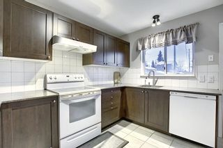 Photo 3: 148 Martinbrook Road NE in Calgary: Martindale Detached for sale : MLS®# A1069504