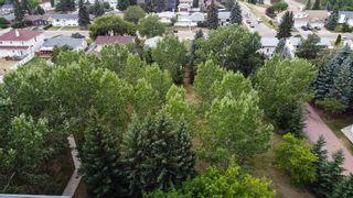 Photo 46: 316 9820 165 Street NW in Edmonton: Zone 22 Condo for sale : MLS®# E4255876