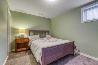 Photo 33: 835 NEW BRIGHTON Drive SE in Calgary: New Brighton Detached for sale : MLS®# A1032257
