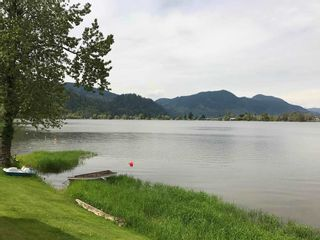 """Photo 16: 98 9341 SHOOK Road in Mission: Durieu Land for sale in """"Swan's Point"""" : MLS®# R2165234"""
