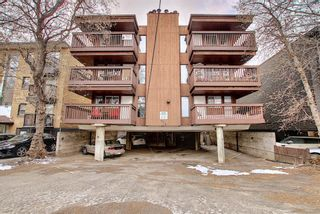 Photo 11: 203 534 20 Avenue SW in Calgary: Cliff Bungalow Apartment for sale : MLS®# A1098206