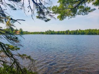 Photo 17: Lot 101 Dorey Mills Road in Clearland: 405-Lunenburg County Vacant Land for sale (South Shore)  : MLS®# 202119645