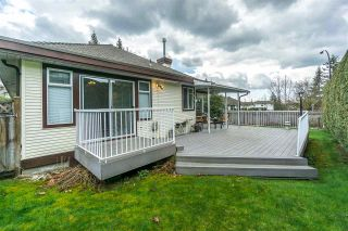 Photo 18: 23571 108 AVENUE in Maple Ridge: Albion House for sale : MLS®# R2253210