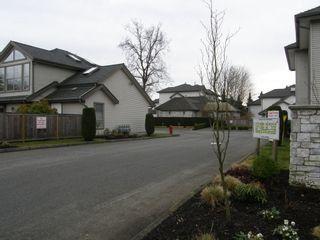 "Photo 2: 6 19160 119TH AVENUE in ""WINDSOR OAKS"": Home for sale : MLS®# V1042277"