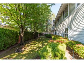 """Photo 20: 101 15439 100 Avenue in Surrey: Guildford Townhouse for sale in """"PLUM TREE LANE"""" (North Surrey)  : MLS®# R2095755"""