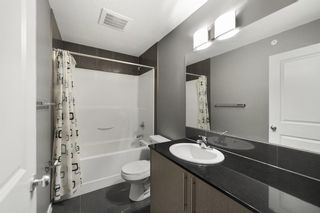 Photo 7: 4303 5305 32 Avenue SW in Calgary: Glenbrook Apartment for sale : MLS®# A1054789