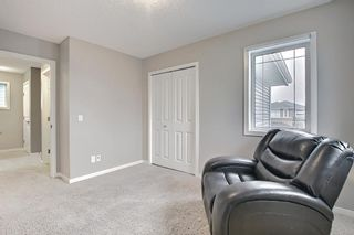 Photo 43: 6 Redstone Manor NE in Calgary: Redstone Detached for sale : MLS®# A1106448