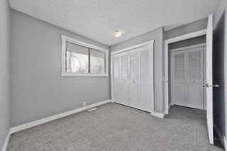 Photo 17: 1244 Falconridge Drive NE in Calgary: Falconridge Detached for sale : MLS®# A1067317