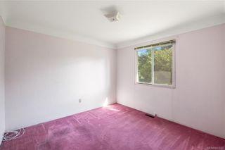 Photo 6: 291 Homer Rd in Saanich: SW Tillicum House for sale (Saanich West)  : MLS®# 843937