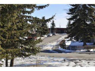 Photo 18: 48 SPRING HAVEN Road SE: Airdrie Residential Detached Single Family for sale : MLS®# C3607940