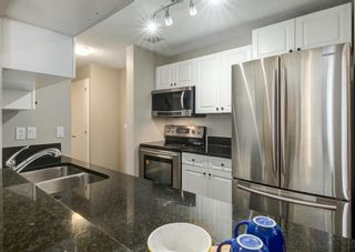 Photo 16: 304 545 18 Avenue SW in Calgary: Cliff Bungalow Apartment for sale : MLS®# A1129205