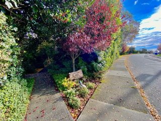 Photo 63: 407 Newport Ave in : OB South Oak Bay House for sale (Oak Bay)  : MLS®# 871728