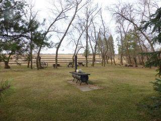 Photo 34: 26101 Twp 490: Rural Leduc County House for sale : MLS®# E4261133