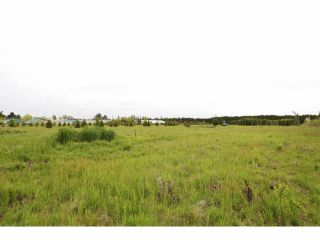 """Photo 7: 7200 216TH Street in Langley: Willoughby Heights Land for sale in """"Milner"""" : MLS®# F1411651"""