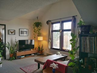 Photo 17: 101 Ontario St in : Vi James Bay Multi Family for sale (Victoria)  : MLS®# 870902
