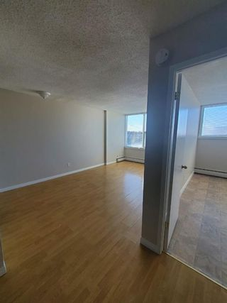 Photo 13: 304 4820 47 Avenue: Red Deer Apartment for sale : MLS®# A1061234