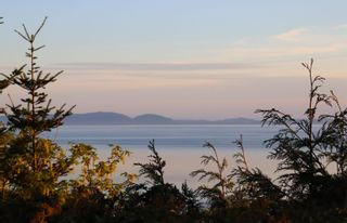 """Photo 8: 987 PACIFIC Drive in Delta: English Bluff House for sale in """"THE VILLAGE"""" (Tsawwassen)  : MLS®# R2615607"""