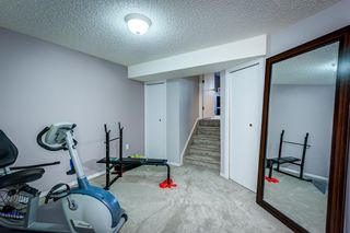 Photo 39: 12 Willowbrook Crescent: St. Albert House for sale : MLS®# E4264517