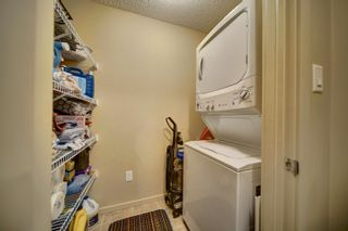Photo 27: 141 1196 HYNDMAN Road in Edmonton: Zone 35 Condo for sale : MLS®# E4262588