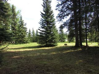 Photo 19: 127, 5241 TWP Rd 325A: Rural Mountain View County Land for sale : MLS®# C4299936