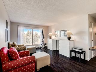 Photo 3: 412A 4455 Greenview Drive NE in Calgary: Greenview Apartment for sale : MLS®# A1101294