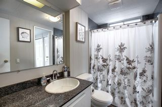 Photo 13: 128 Big Springs Drive SE: Airdrie Detached for sale : MLS®# A1117897