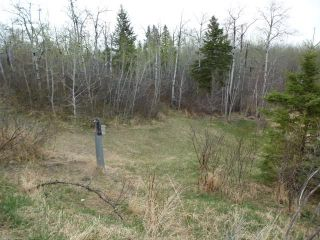 Photo 15: 57023 RGE RD 220: Rural Sturgeon County House for sale : MLS®# E4243864