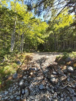 Photo 26: 1380 Canada Hill Road in Canada Hill: 407-Shelburne County Residential for sale (South Shore)  : MLS®# 202112231