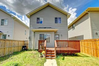 Photo 48: 68 TARALAKE Street NE in Calgary: Taradale Detached for sale : MLS®# C4256215