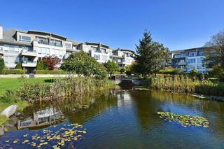 Photo 19: 103 5800 ANDREWS ROAD in Richmond: Steveston South Condo for sale : MLS®# R2409044