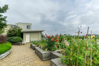 Photo 18: 262 15850 26 AVENUE in Surrey: Grandview Surrey Condo for sale (South Surrey White Rock)  : MLS®# R2405360